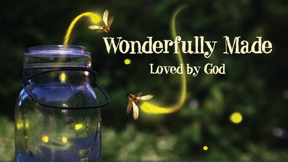 Wonderfully Made, Loved by God
